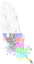 The Natural Aggregate 10000 Little Popstars Feather Icon